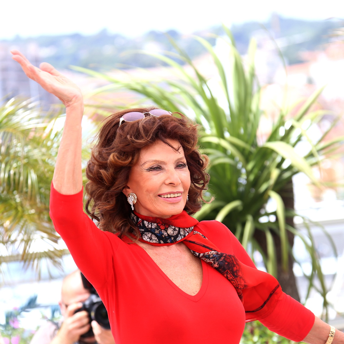 Sophia Loren, l'actualité de l'icône des années 50